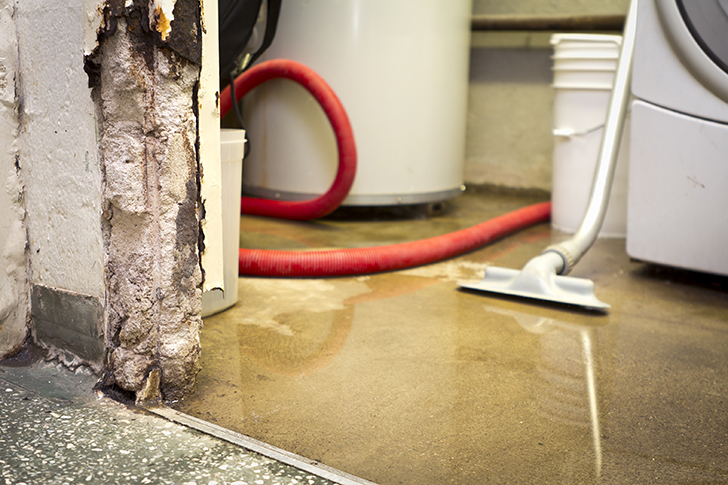 Detecting A Water Leak Early Could Save You Thousands of Dollars